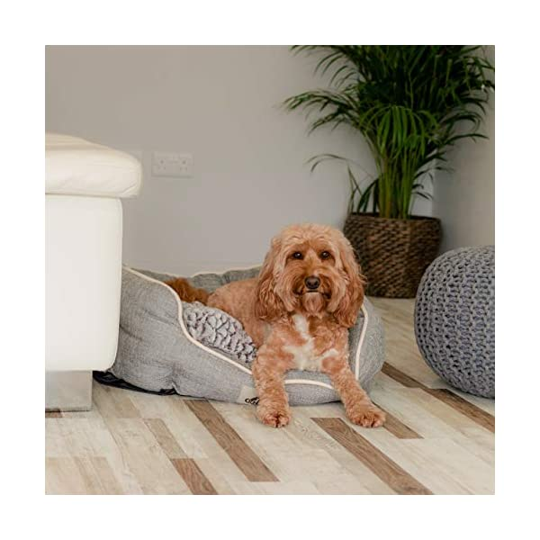 AllPetSolutions Alfie Range Beds Fleece Lined Warm Dog Bed, Small, Brown 3
