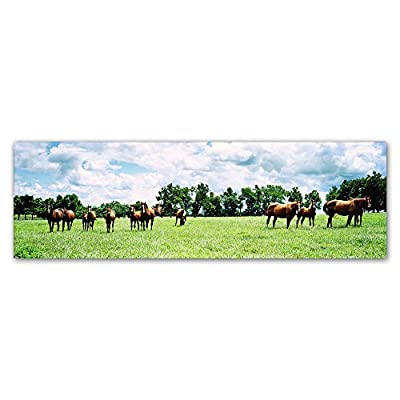Trademark Fine Art Kentucky Horse 5 by Preston Hanging Art Piece