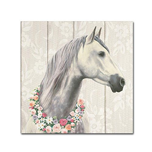 Spirit Stallion I on wood Square by James Wiens, 14x14-Inch Canvas Wall Art