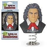 Archie McPhee Dashboard Genius Beethoven