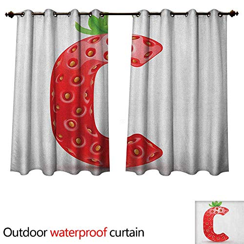 Letter C Outdoor Curtains for Patio Sheer Strawberry Letter from Alphabet with Green Leaves Seeds Uppercase C W120 x L72(305cm x 183cm)