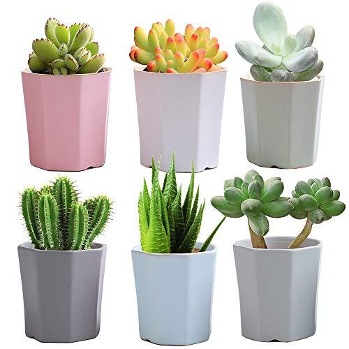 LUCKEGO 2.63 Inch Ceramic Succulent Pot,Cute Hexagonal Shaped Series, Hexagonal Cactus Pot Planter,Flower Pot,Pottery Bonsai Pot,Ceramic Flowing Glaze Base Serial Set,Pot with A Hole(6 in Set)
