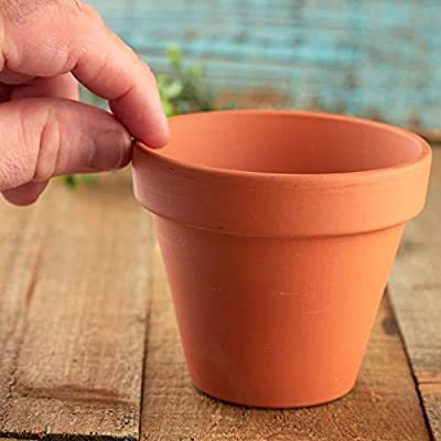 Factory Direct Craft Small Terra Cotta Flower Pot | 6 Pieces: Home & Kitchen