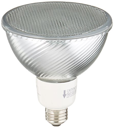 Full Spectrum Cfl Flood Lights