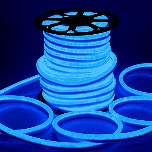 Neon Effect Led Rope Light in Florida - 5
