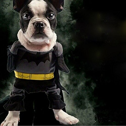 Eastlion Pet Cat Dog Batman Costume Warm Outfit Clothes,The Cute Style, Funny Party Fancy Dress (M)]()