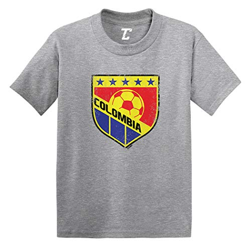 Colombia Soccer - Distressed Badge Infant/Toddler Cotton Jersey T-Shirt (Light Gray, 18 Months)