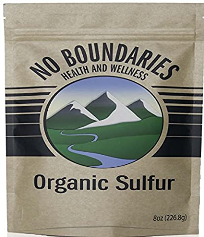 MSM Organic Sulfur Crystals by No Boundaries Health and Wellness – All-Natural, Premium Health Supplement: 99.9% Pure MSM – Benefits: Joint Pain, Allergies, Skin, Hair & Nail Health – No - Therapy Bath 1 Lb Powder