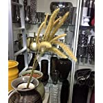 Artificial-Dried-wheat-sorghum-panicle-reed-foxtail-granola-bars-Fake-Flowers-DIY-ScrapbookingHome-GardenWedding-Party-Decoration-50PCS-K0204