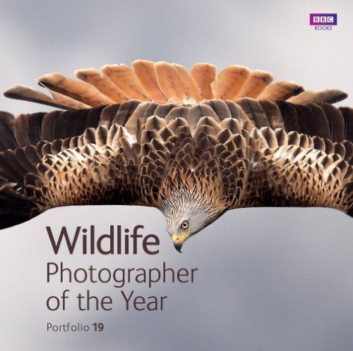 Wildlife Photographer of the Year: Portfolio 19 by Rosamund Kidman Cox (2010-04-01)