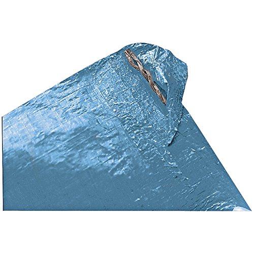 Texsport Reinforced Rip-Stop Polyethylene Tarp (Blue, 6 x 8-Feet)
