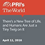 There's a New Tree of Life, and Humans Are Just a Tiny Twig on It | Carolyn Beeler