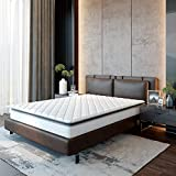 Best Innerspring Queens - Classic Brands Serena Pillow Top Innerspring 10-Inch Mattress Review