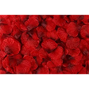 Helenhouse 1000 PCS Artificial Silk Flower Red with DarkRed Rose Petals for Wedding Party Bridal Decoration 48