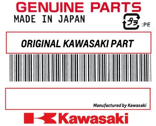 Kawasaki W99995-470A Vacu-Hold Jet Ski Cover