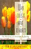Why Does It Have to Hurt? : The Meaning of Christian Suffering, McCartney, Dan G., 0875523862