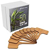 50 Bamboo Plant Labels in Gift Box (T-Type) | Plant Tags | Cheese Markers