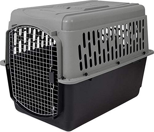 (Aspen Pet Porter Heavy-Duty Pet Carrier,Dark Gray/Black,70-90 LBS)