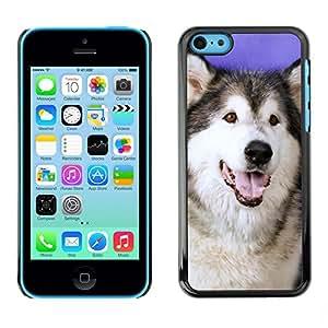 Vortex Accessory Carcasa Protectora Para APPLE iPHONE 5C - Husky Siberian Wolf Dog Canine -