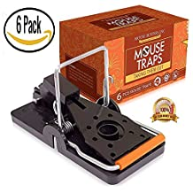 "(6- Pack) Mouse Traps Premium (2"" x 4"" Inches) Snap Mice Trap catcher"