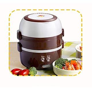 MEIDAY Fiambrera eléctrica, Calentador portátil para el Almuerzo de Alimentos, Mini Cocina de Vapor de arroz, con 2 contenedores extraíbles de Acero Inoxidable, Doble Capa,Pink