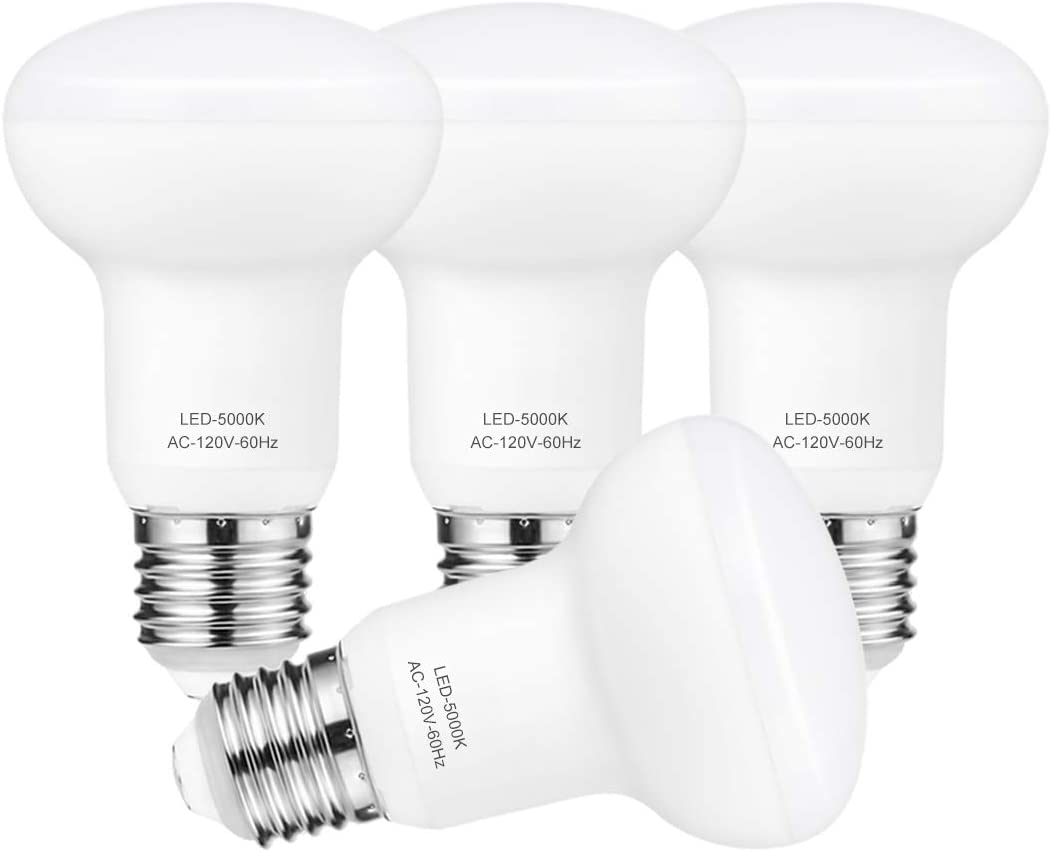 Indoor Flood Lights R20 Bulb Dimmable, 60W Equivalent, CRI 85, Daylight 5000K, 700lm,Recessed Light Bulbs for Home or Office Space, 4 Pack