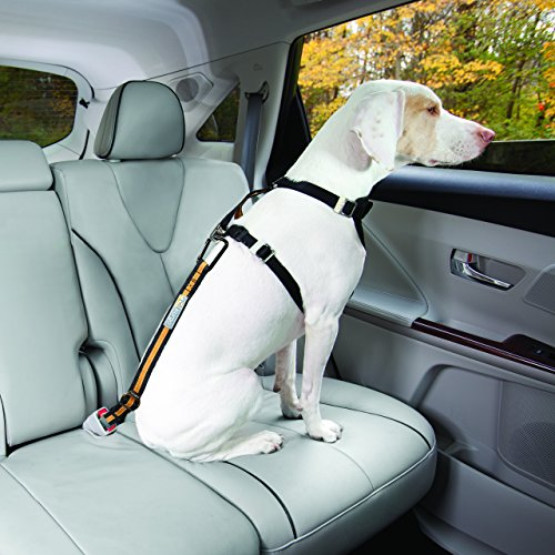 Kurgo-Direct-to-Seatbelt-Tether-Car-Restraint-for-Dogs
