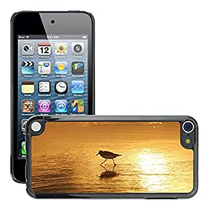 Super Stella Slim PC Hard Case Cover Skin Armor Shell Protection // M00421612 Sanderling Bird Wading Water Beach // Apple ipod Touch 5 5G 5th