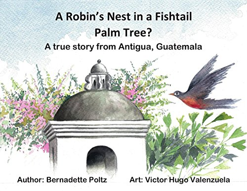 A Robin's Nest in a Fishtail Palm Tree?: A true story from Antigua, Guatemala