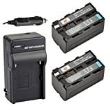 DSTE® 2x NP-F750 Battery + DC01 Travel and Car Charger Adapter for Sony