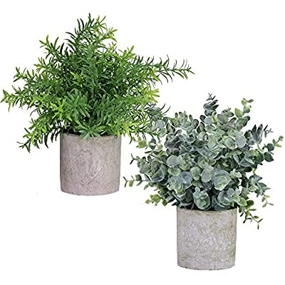 """Winlyn 2 Pack Artificial Potted Plants Faux Eucalyptus & Rosemary Greenery in Pots Small Houseplants 8.3""""-9"""" Tall for Indoor Greenery Tabletop Décor Centerpiece"""