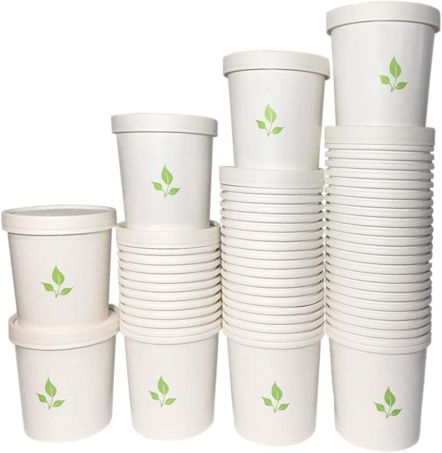 Greenvali Disposable Paper Cup With Lid - 16oz Pint - Hot and Cold Serve or Store (60 PACK)…
