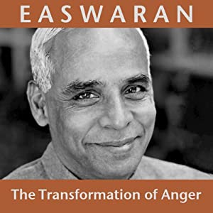 The Transformation of Anger Audiobook