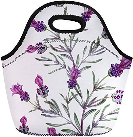 Vontuxe Insulated Lunch Tote Bag French Lavender Oil in Watercolor Essential Bottles and Botanical Outdoor Picnic Food Handbag Lunch Box for Men Women Children ()