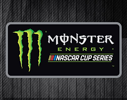(R and R Imports Nascar Monster Energy Rectangle Magnet )