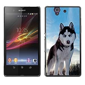 Vortex Accessory Carcasa Protectora Para Sony Xperia Z L36H C6602 C6603 C6606 C6616 - Husky Bright Blue Eyes Winter Dog -
