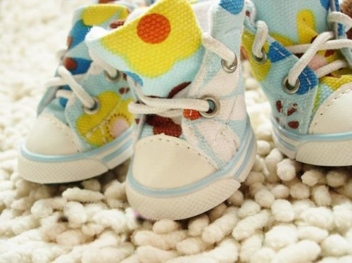 Dog's Footwear Pet's Cute Sneakers Animal Shoes Blue Color way-Size 1