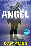 img - for ANGEL: A Wade Carver Thriller (Florida Mystery Series) (Volume 3) (The Wade Carver Thrillers) book / textbook / text book