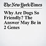 Why Are Dogs So Friendly? The Answer May Be in 2 Genes | James Gorman