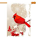 GDF Studio Red Cardinal Bird House Flag, Winter Snow Background, Double-Sided, 100% All-Weather Polyester, Winter/Christmas Yard Flag to Bright Up Your House 28″ x 40″ Review