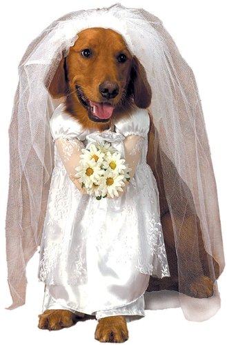 Pet Costume Bride Dog Extra...