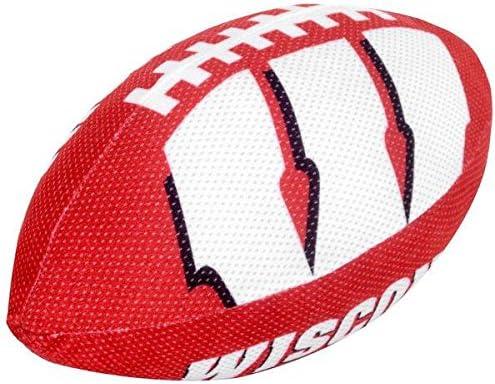 FOCO NCAA Unisex 2015 Plush Football