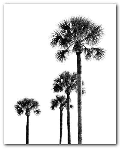 Palm trees black and white print
