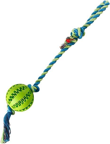 Zhichengbosi Pelota de entrenamiento con cuerda para perros ...