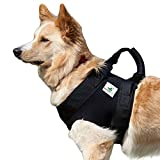 Pfaff Medical Dog Front Carrier Harness Helping Harness for Elderly Dogs Front Lifting Harness (XS)