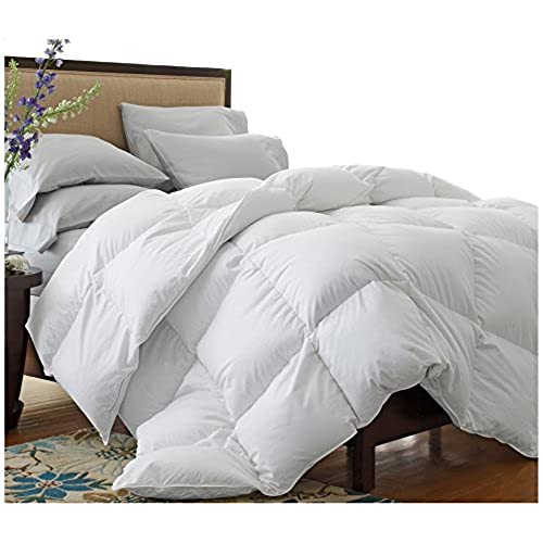 reviews best a alternative all feather cozy comforters down season goose what is comforter