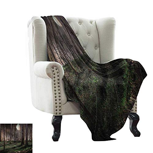 RenteriaDecor Gothic Decor Collection,Custom Picture Blankets Dark Night in The Forest with Full Moon Horror Theme Grunge Style Halloween Photo 60