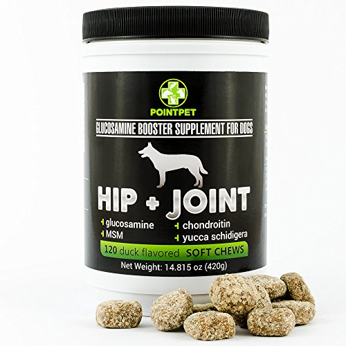 glucosamine-chondroitin-for-dogs-point-pet-glucosamine-booster-supplements-for-dogs-dog-supplements-