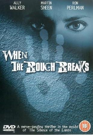 When the Bough Breaks [Reino Unido] [DVD]: Amazon.es: Ally ...