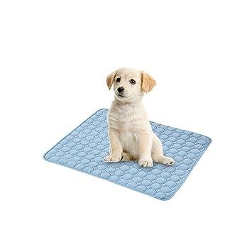 Heylookhere Cojín de enfriamiento para Mascotas Perro Gato Gatito Hound Cachorro de Verano Cama de enfriamiento para Camas Kentes Crates: Amazon.es: ...